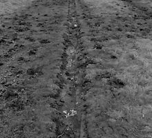Muddy Path by jaoxley