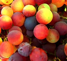 Grapes in Orgiva by Laural Retz