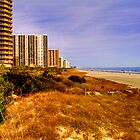 North Myrtle Beach Hotels by imagetj