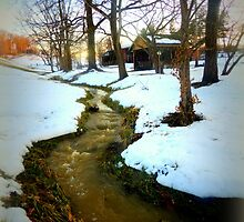 The Gushing Creek by TrendleEllwood