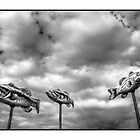 Fish In The Sky by Michel Godts