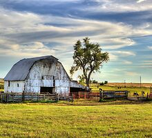 Midway Farm by chrismartintv