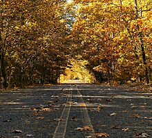 Two Lane Country Road by Sharon Woerner