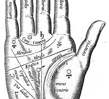 Palmistry Poster and Canvas Print by oldmethods