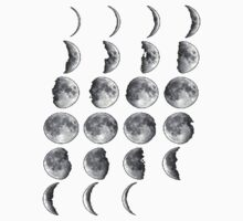 Phases of the Moon - No Background  by smentcreations