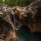 Killarney Glen, Beechmont by McguiganVisuals