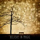 Beleive In Magic by sandra arduini