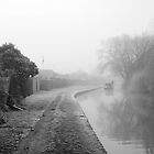 Foggy Canal At Shobnall by Rod Johnson
