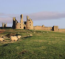 Castles and Colour by Brian Avery