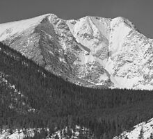 Colorado Ypsilon Mountain Rocky Mountain National Park  by Bo Insogna