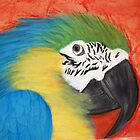 parrot head by victorgroza