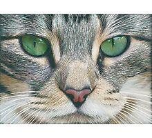 Emerald Eyes Scratch Art Photographic Print