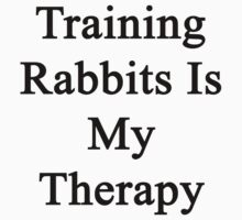 Training Rabbits Is My Therapy by supernova23