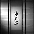 Aikido - Black and White 01 by soniei