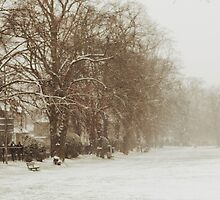 Snow in Kingston park by jackalexanderuk