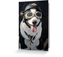 Biker Dog Greeting Card