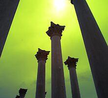 Arboretum Pillars by mkurec