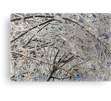 Winter Freezing Metal Print