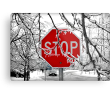 Stop Glacee Metal Print