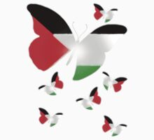 The butterflies of Palestine by Syed Mowla