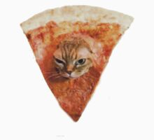 Funny Pizza Slice Cat  by mickykk123