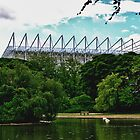 St James Park by Giorgio Elesaro