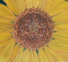 sunflower 2 by victorgroza