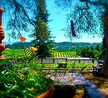 wine country beauty by marcy413