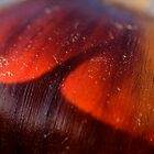 chestnut dream by yvesrossetti