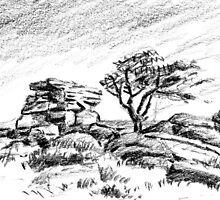Saddle Tor, Dartmoor by Barnaby Edwards
