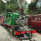 Puffing Billy by DavidsArt