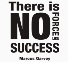 No Force Like Success by kashley