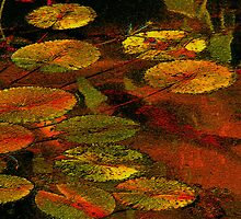 Red Koi With Water Lilies by Pavel Rehurek