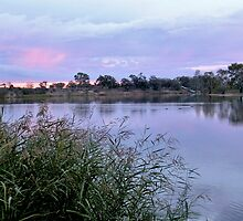 Along the Murray River by John Vriesekolk