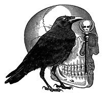 Raven Skull & Skeleton Key by Zehda