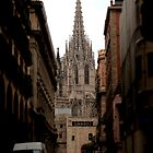 Cathedral of the Gothic Quarter by rsangsterkelly