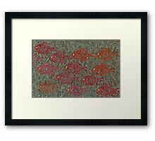 Bluegills on Charcoal Unryu Paper Framed Print