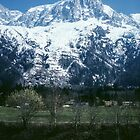 Mountain nr Chamonix France 198404270084m  by Fred Mitchell