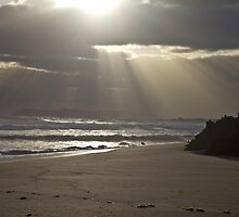 Sunset - Lights Beach Feb 2014 by pennyswork