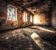 torched and peeling by Art Hakker Photography