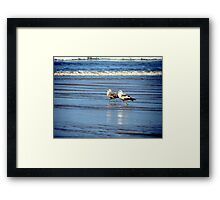 Twas A Good Dinner..Now How About A Little Walk About Framed Print