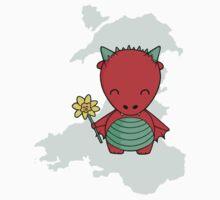 Little Welsh Dragon Kids Clothes