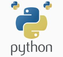 Python by developer