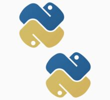 Python ×2 by developer