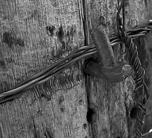 Old Fence Post by Brady Lane