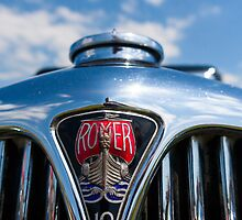 Rover 10 grille by Martyn Franklin