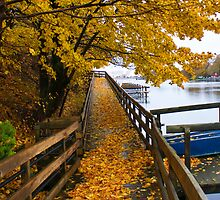 Fall along the Riverwalk by SJ-Gordon