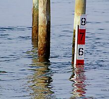 Wood Pilings in the Ocean by Gilda Axelrod