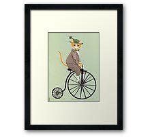 Dandy Penny Farthing Framed Print