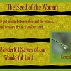 The Seed of the Woman by aprilann